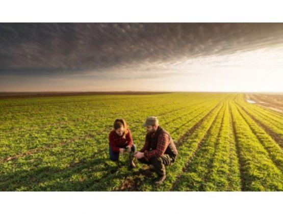 Список получателей сельскохозяйственных субсидий расширен