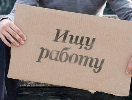 С начала года в Молдове искали работу больше 50 тысяч граждан
