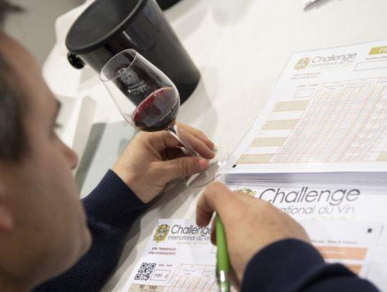 Молдавские вина получили 47 медалей на конкурсе во Франции