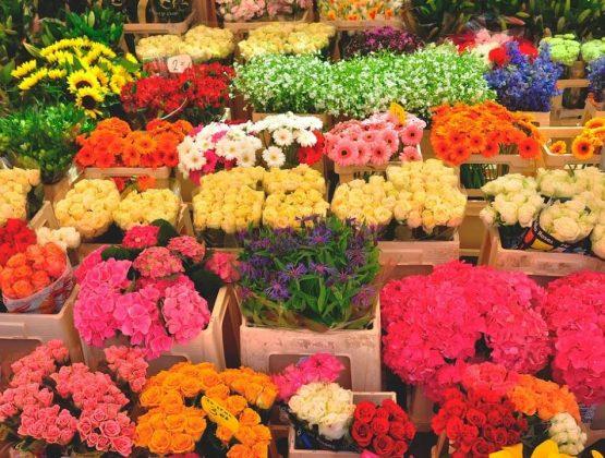 Налоговая служба объявила о внеплановых проверках торговцев цветами