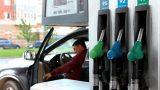 Рост цен на топливо — это согласованное действие нефтяных компаний, заявила глава государства