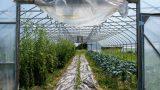 Запущена платформа для исследований в области экологического земледелия