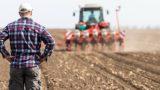 На 6 тыс. л дизтоплива из Румынии претендуют свыше 3,4 тыс. сельхозпроизводителей Молдовы