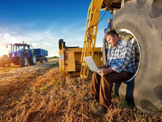 Молдавские фермеры рискуют остаться без субсидий