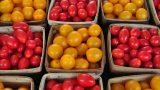 Цены в Молдове выросли в марте в среднем на 0,96%