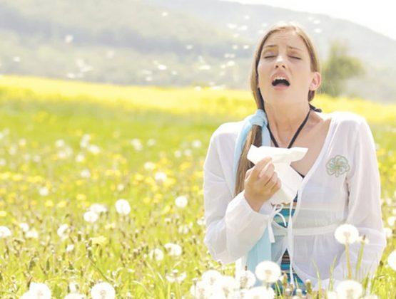Как пережить весеннее обострение аллергии
