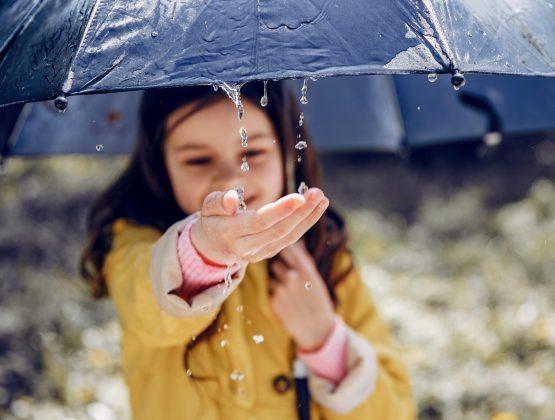 Прогноз погоды на пятницу и выходные: переменная облачность, кратковременные дожди