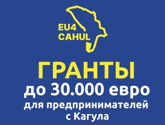 В Кагуле стартовала новая грантовая программа на сумму 700 000 евро для предпринимателей