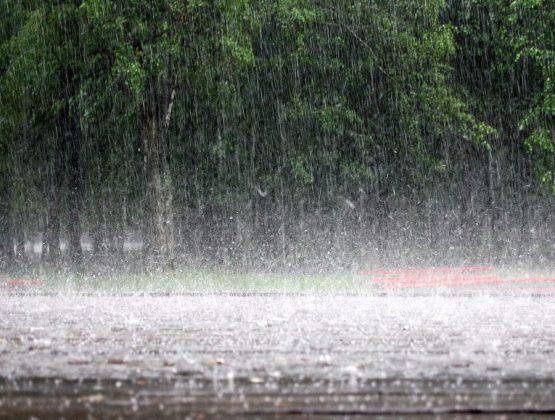 Ожидаются ливни, грозы, сильный ветер и град