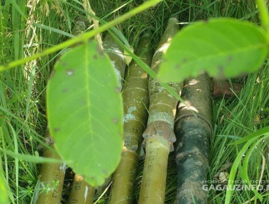 В лесу близ города Комрат найден гранатомет с боеприпасами