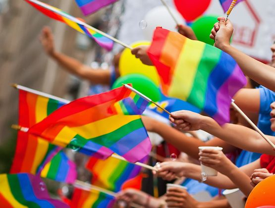 Венгрия приняла закон запрещающии «пропаганду ЛГБТ» в школах