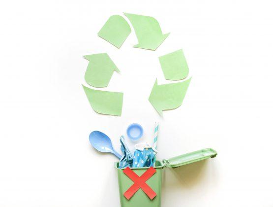 Республика Молдова присоединилась к глобальному движению по борьбе с пластиковыми отходами