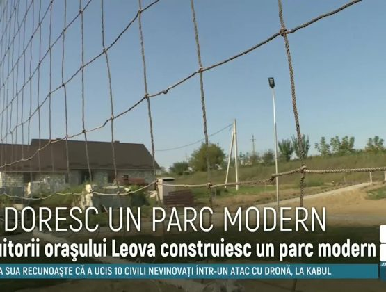 Жители города Леова решили обустроить парк для детей рядом с домом за собственные деньги