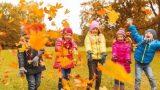 Осенние школьные каникулы могут продлить до 7 ноября